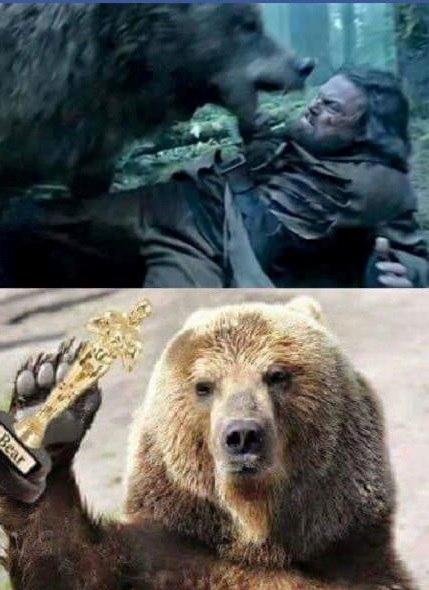 дикаприо-оскар-выживший-медведь-2749987.